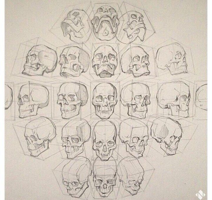 720x680 Figure Drawing Head Positions. Character Design