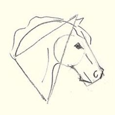 236x236 Learn How To Draw A Horse's Head Horse Head, Horse Drawings And Draw
