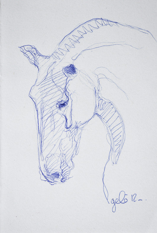 531x787 Sketch 175 Ooak Horse Head Blue Ballpoint Pen Drawing. Via