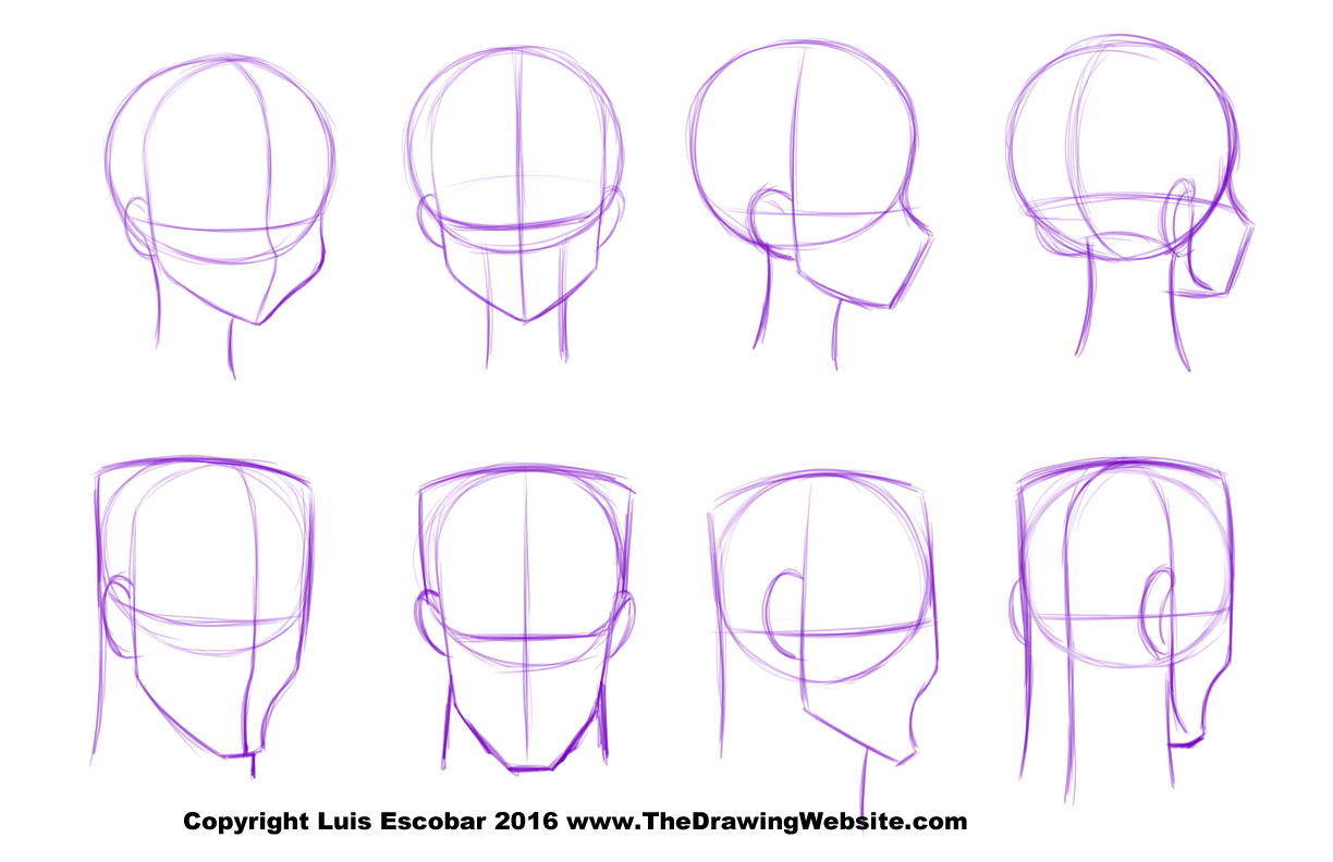 1224x792 Drawing Anime Head Drawing Anime Head How To Draw Manga Head Shape