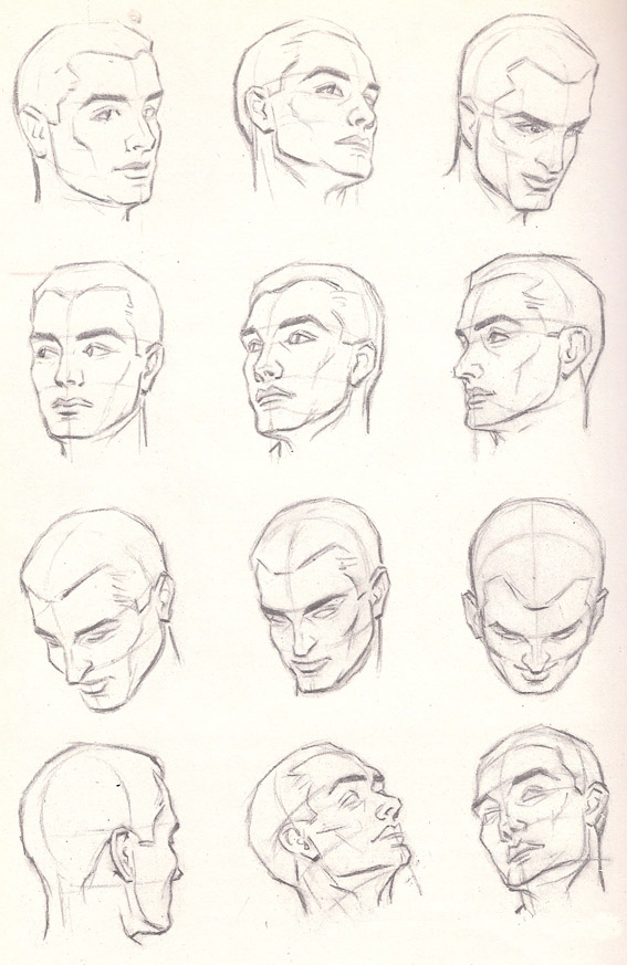 567x873 1. Drawing The Human Head Pacificgraphicdesign