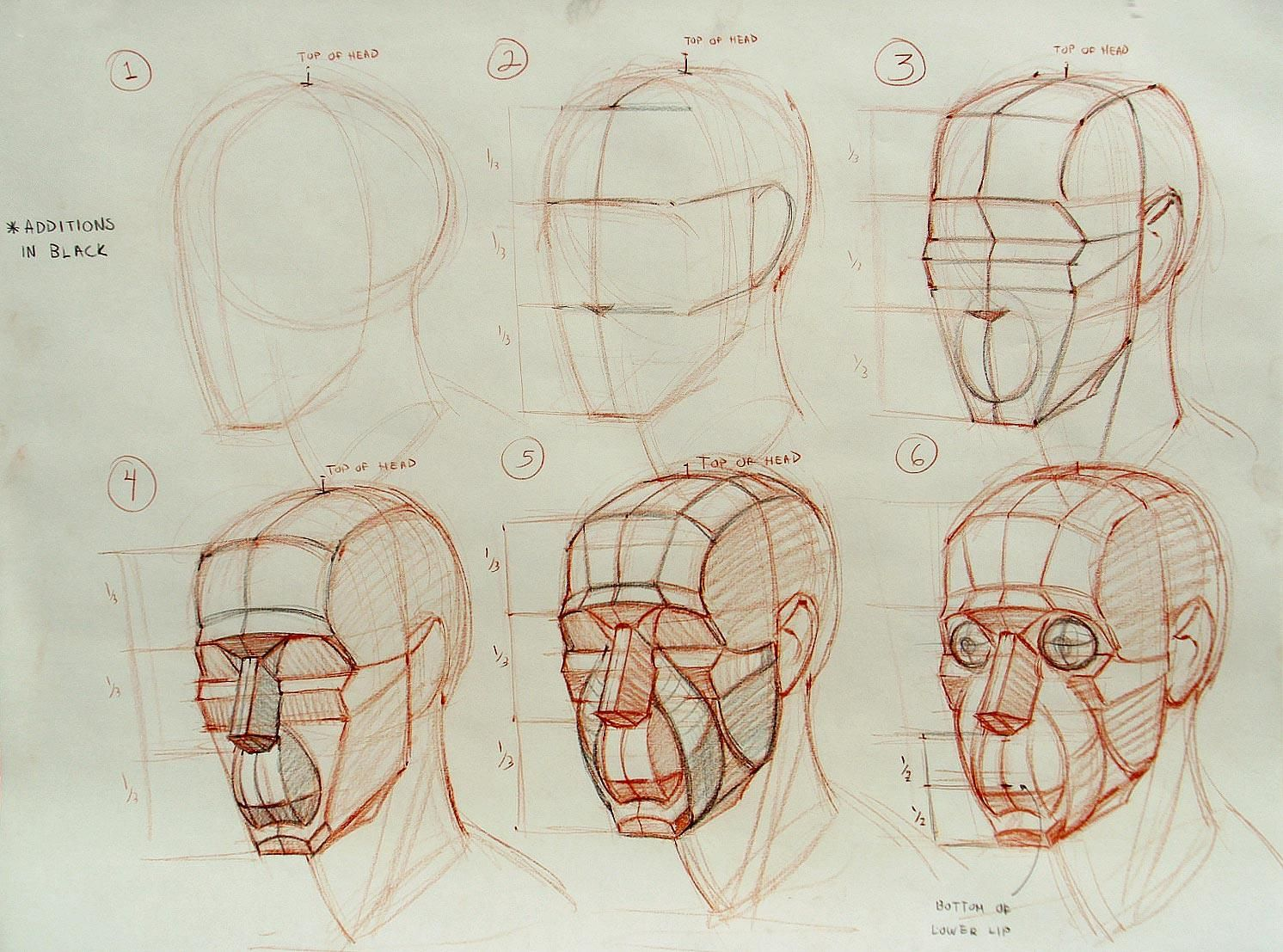 1492x1107 Los Angeles Academy Of Figurative Art Head Structure Demos