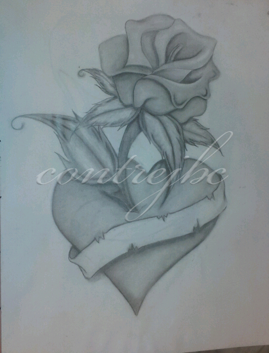 547x719 Heart Rose Drawing By Contrejbc