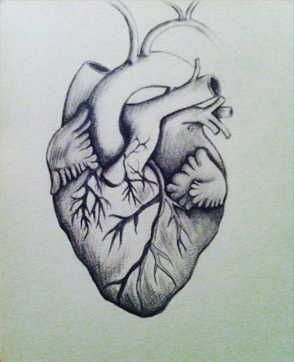 600x738 heart drawings