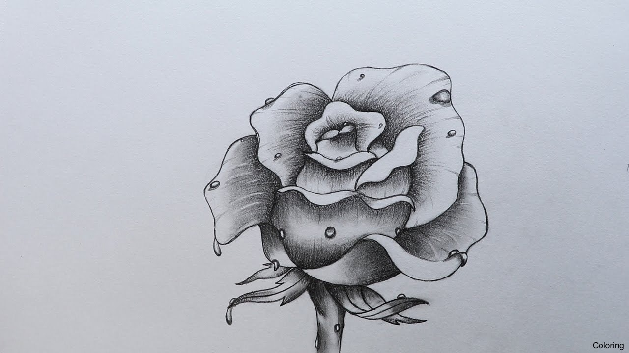 1280x720 Rose Drawing Tumblr Step By Urldircom To Draw Heart Hands In Easy