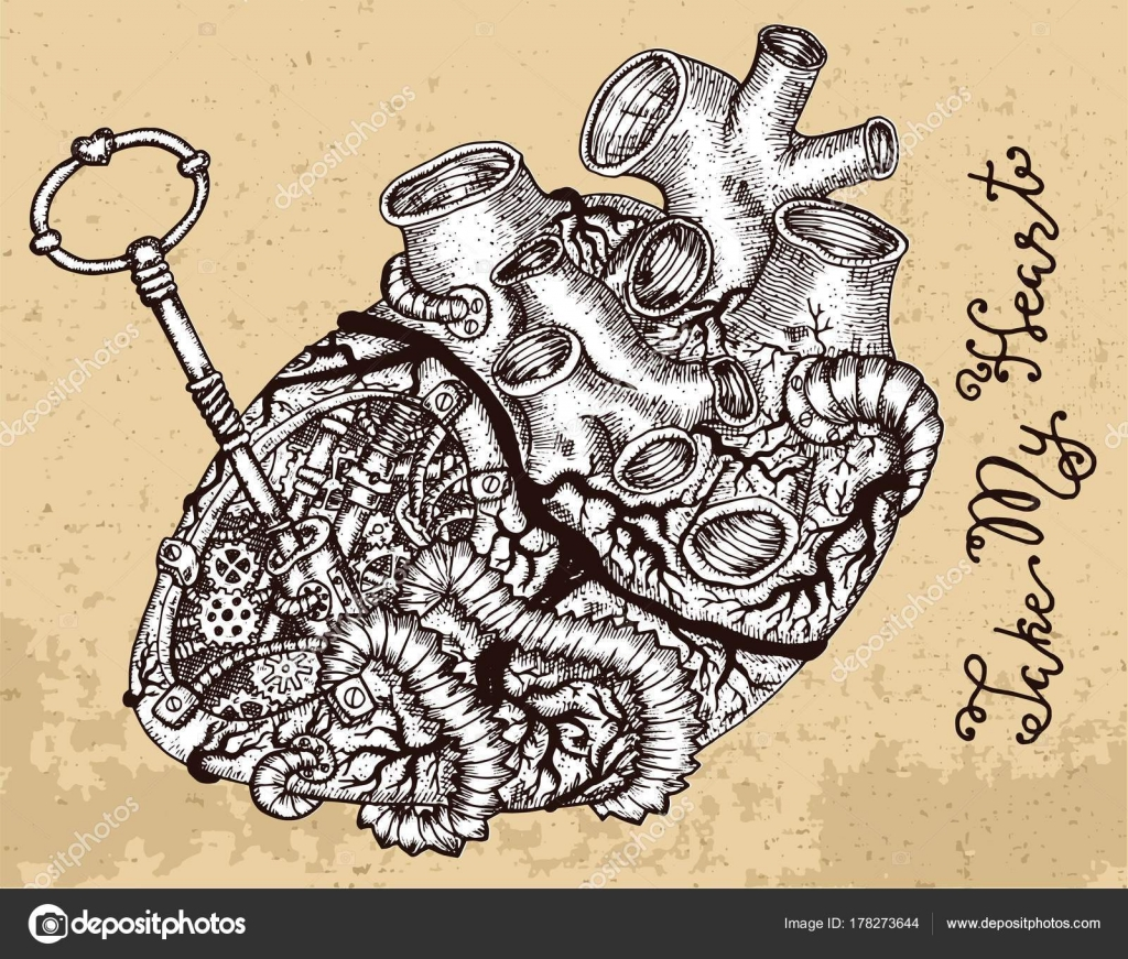 1024x871 Drawing Human Heart Key Steampunk Mechanical Parts Texture Graphic