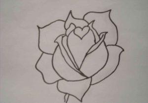 300x210 Graffiti Drawings Of Roses Bleeding Red Rose Drawing Urldircom