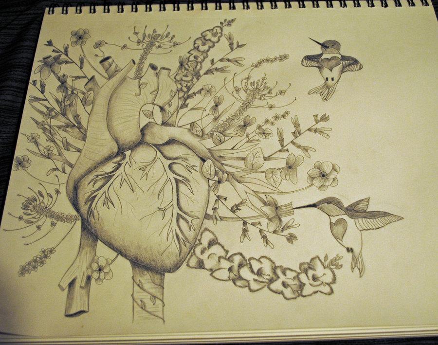900x709 Hummingbird Heartbeat By Bri Bashful