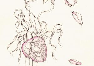 300x210 Drawings Of Hearts And Flowers Roses And Heart Drawing Free
