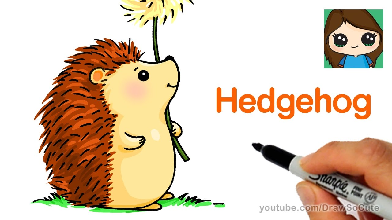 1280x720 How To Draw A Hedgehog Easy