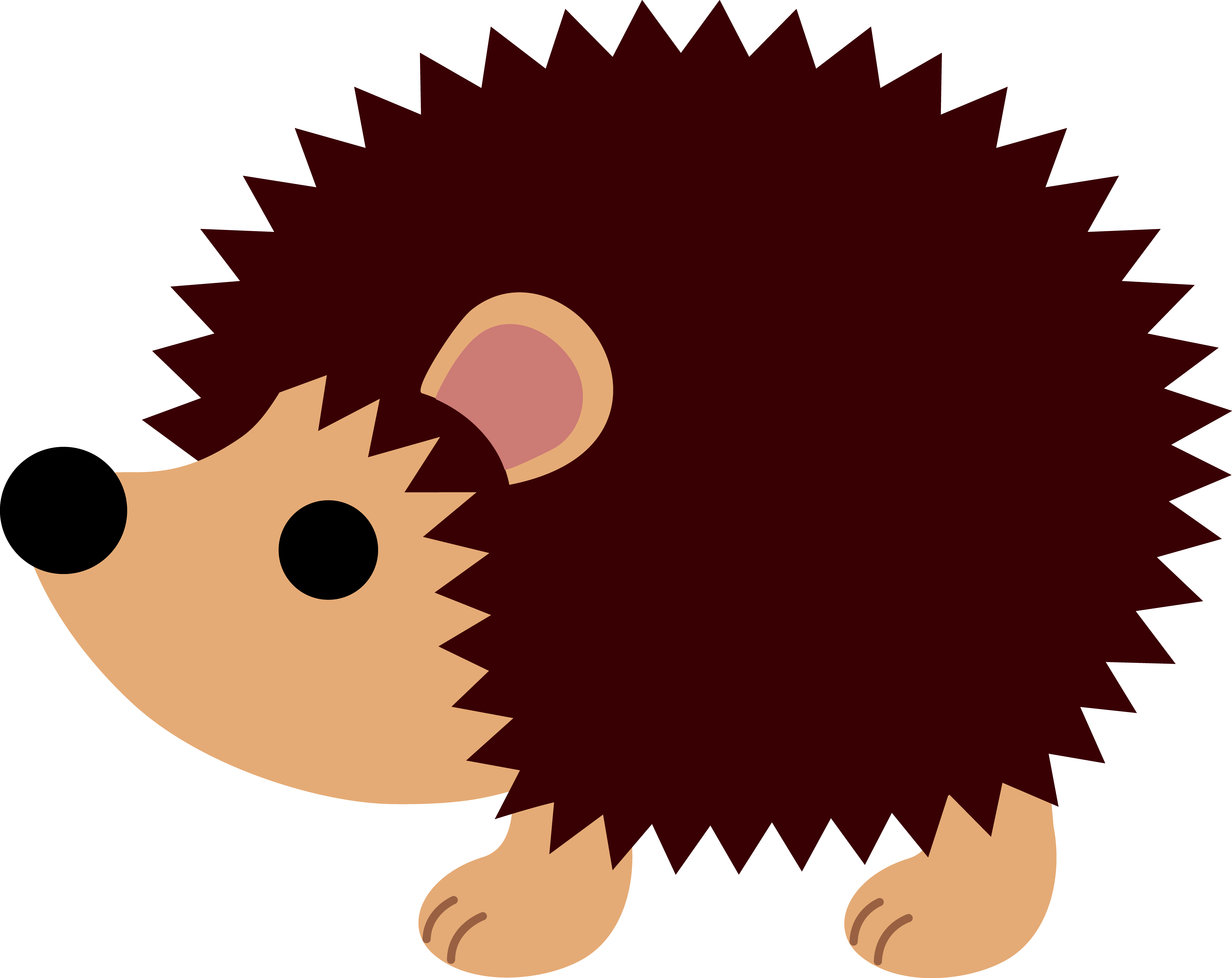 6268x4975 Little Brown Hedgehog