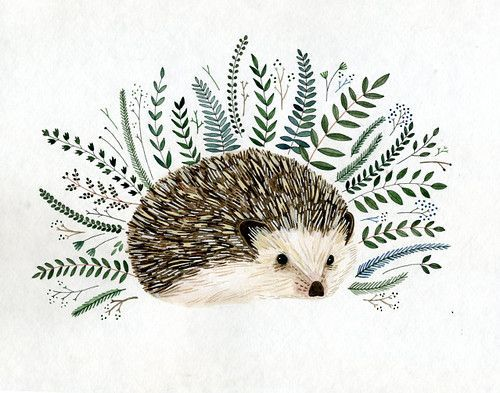 500x393 Blue And Hedgehog Paintings