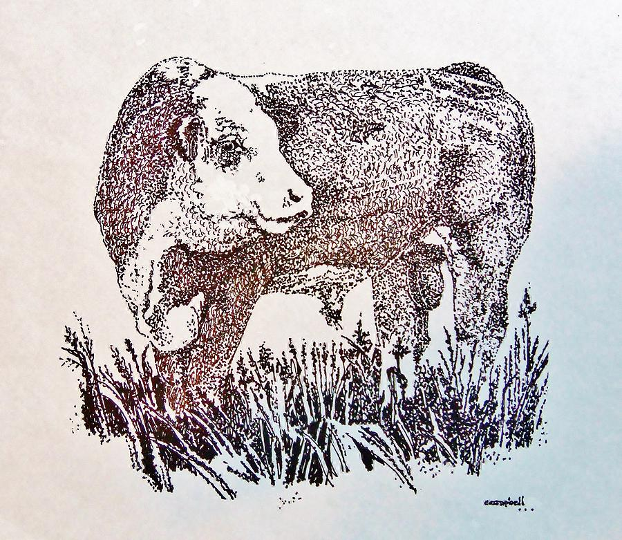 900x781 Polled Hereford Bull Drawing By Larry Campbell