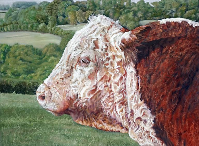 770x566 Saatchi Art Hereford Bull Drawing By Louise Scott