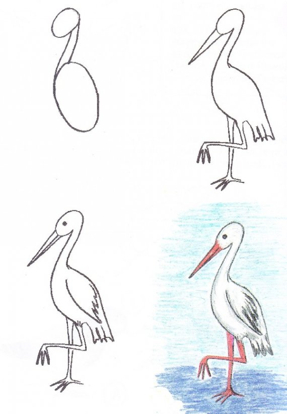 570x822 Painting For Kids. Easy Heron Drawing Tutorial Drawing