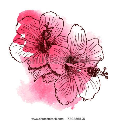 450x470 A Bouquet Of Tropical Hibiscus Flowers. Hand Drawn Sketch. Texture