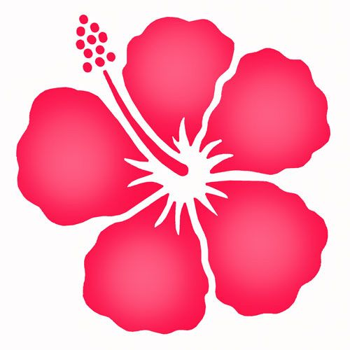 500x500 Simple Hibiscus Flower Probably Get It In Purple