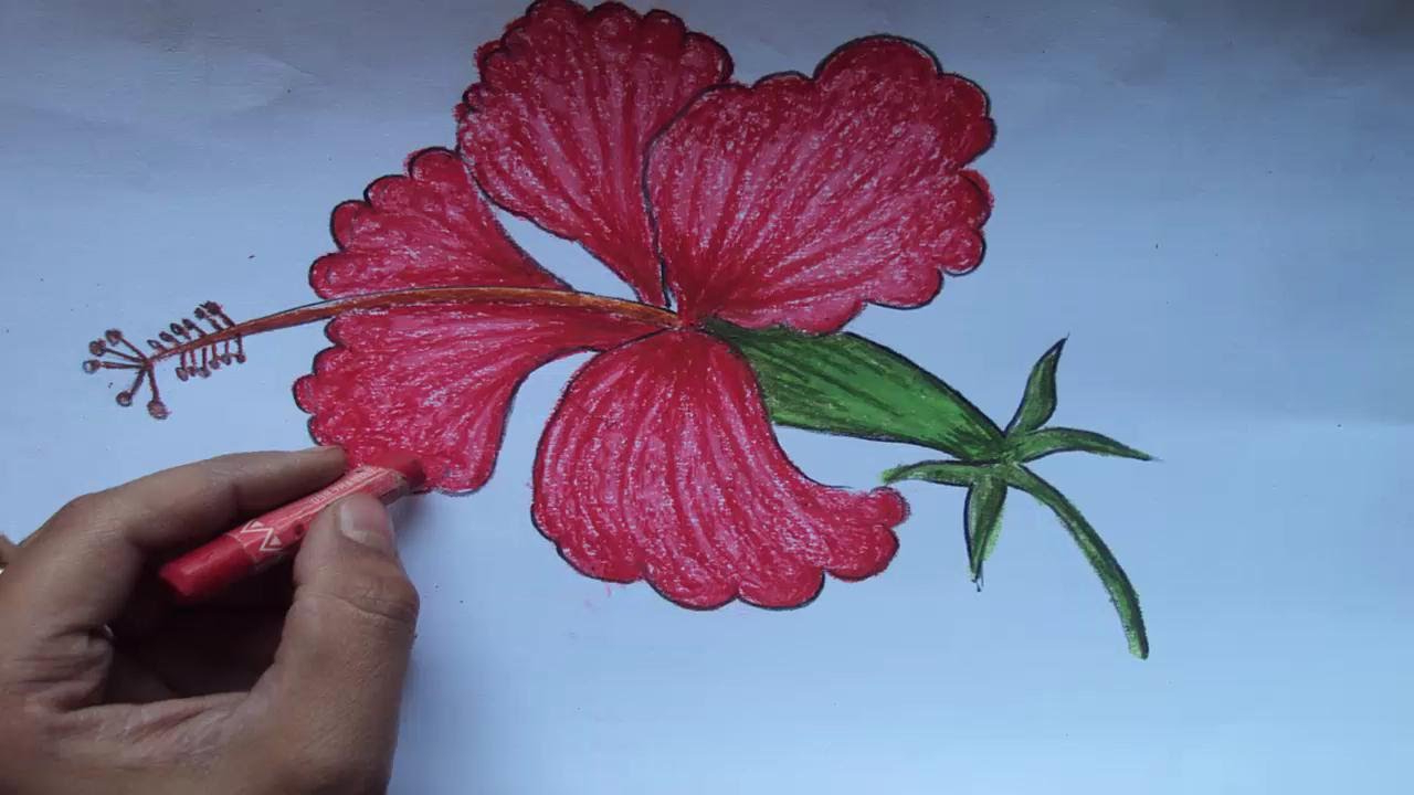1280x720 Colourful Drawing Of Flower For Kids How To Draw A Beautiful