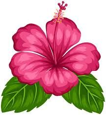216x234 Blue Purple And Pink Hibiscus Flowers Flower Clipart