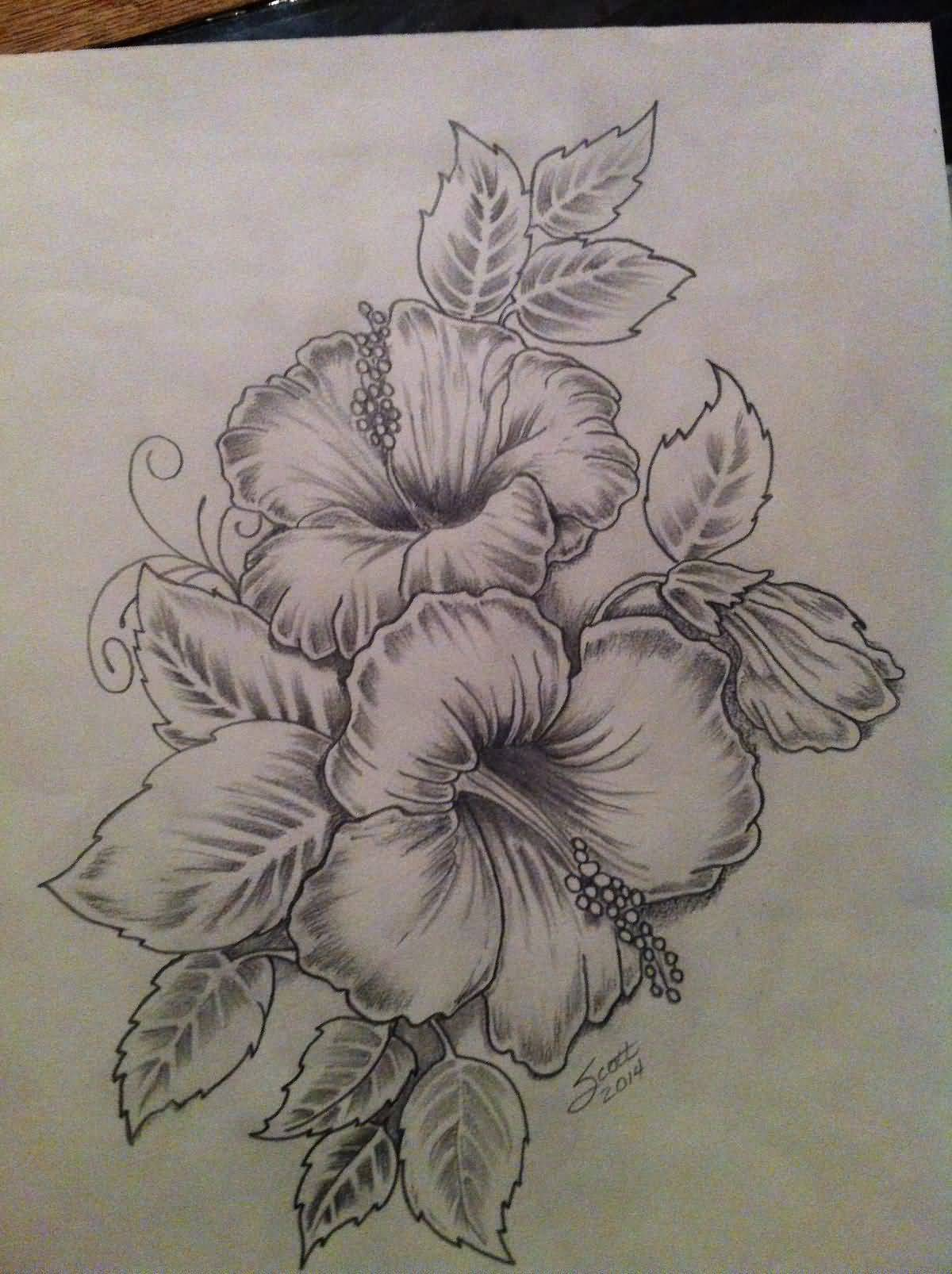 Hibiscus flowers drawing at getdrawings free for personal use 1200x1606 nice colored hibiscus flowers tattoo drawing izmirmasajfo