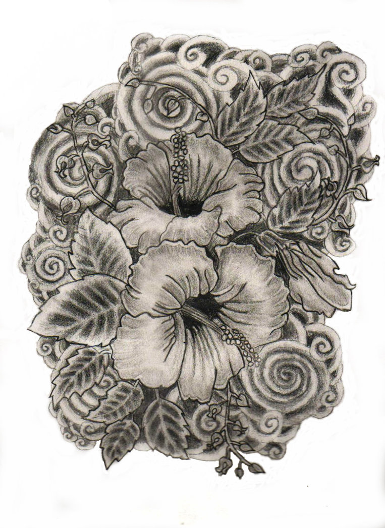 763x1047 Hibiscus Flower Drawing By Chocogirl10