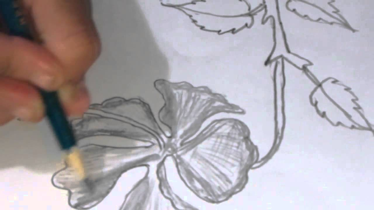 1280x720 How To Draw And Sketch A Hibiscus Type Flower Using Pencil
