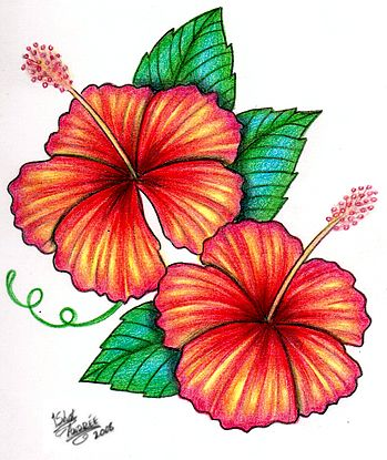 349x415 Hibiscus Tattoo Design By Tattoos