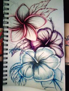 236x314 Hummingbird Hibiscus Tattoo Drawing The Hibiscus Flowers Tattoo
