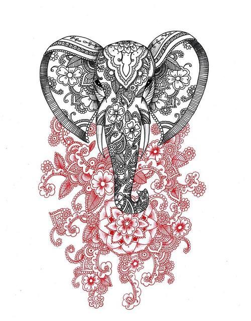 500x639 Drawing Amp Art By Alexandra Frances Via Facebook