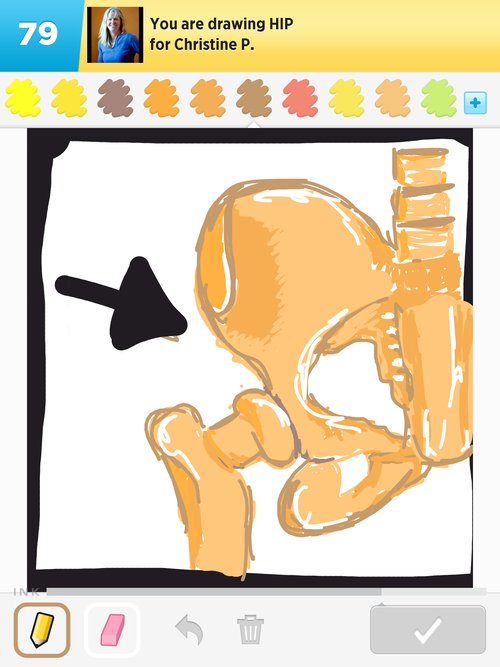 500x667 Hip Drawings