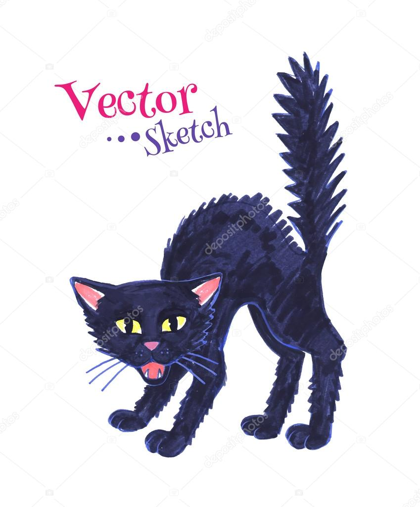 849x1024 Drawing Of Black Hissing Cat Stock Vector Sonya Illustration