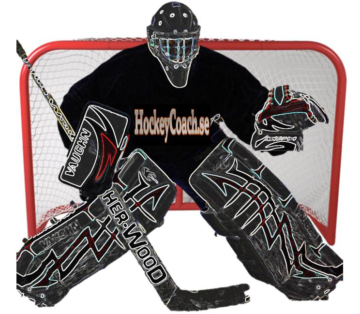 744x649 Goalie Practices Hockey Practices And Drills