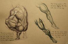 235x152 Image Result For Burne Hogarth Drawing Burne Hogart