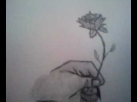 480x360 How To Draw A Hand Holding A Rose
