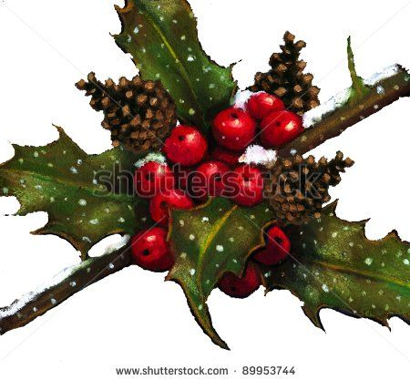 450x417 Pastel Drawing Of Holly, Berries, Pine Cones In Snow Stock Photo