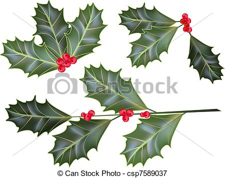 450x356 Holly Berry Vectors Illustration