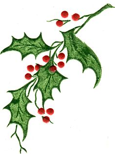 236x316 Holly Leaves Leaf Images, Leaves And Christmas Art
