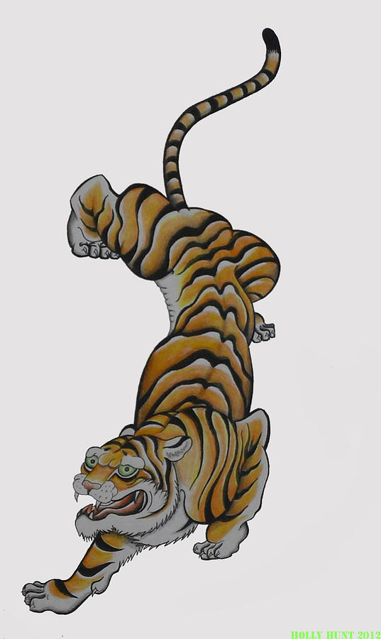 537x900 Tiger Drawing By Holly Hunt