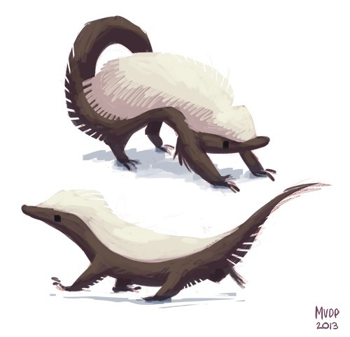 500x482 Honey Badger Warm Up By Sketchinthoughts