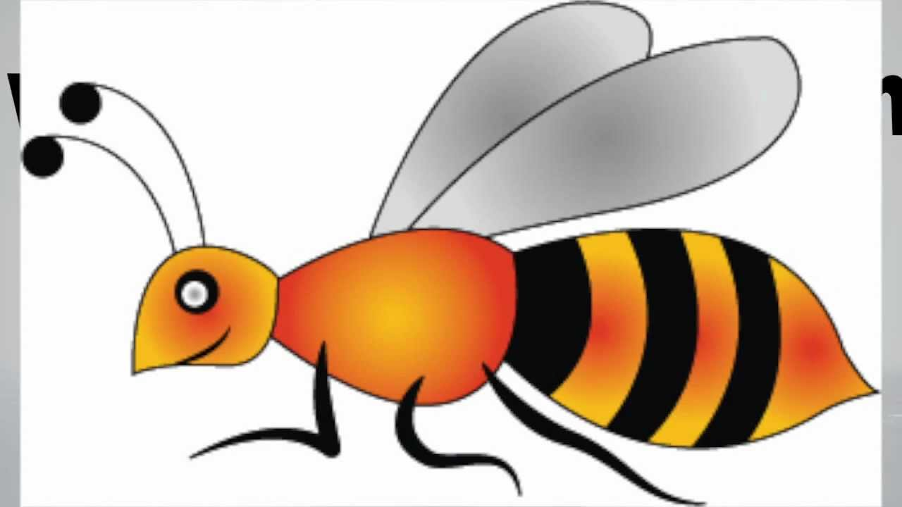 1280x720 How To Draw A Bee Step By Step