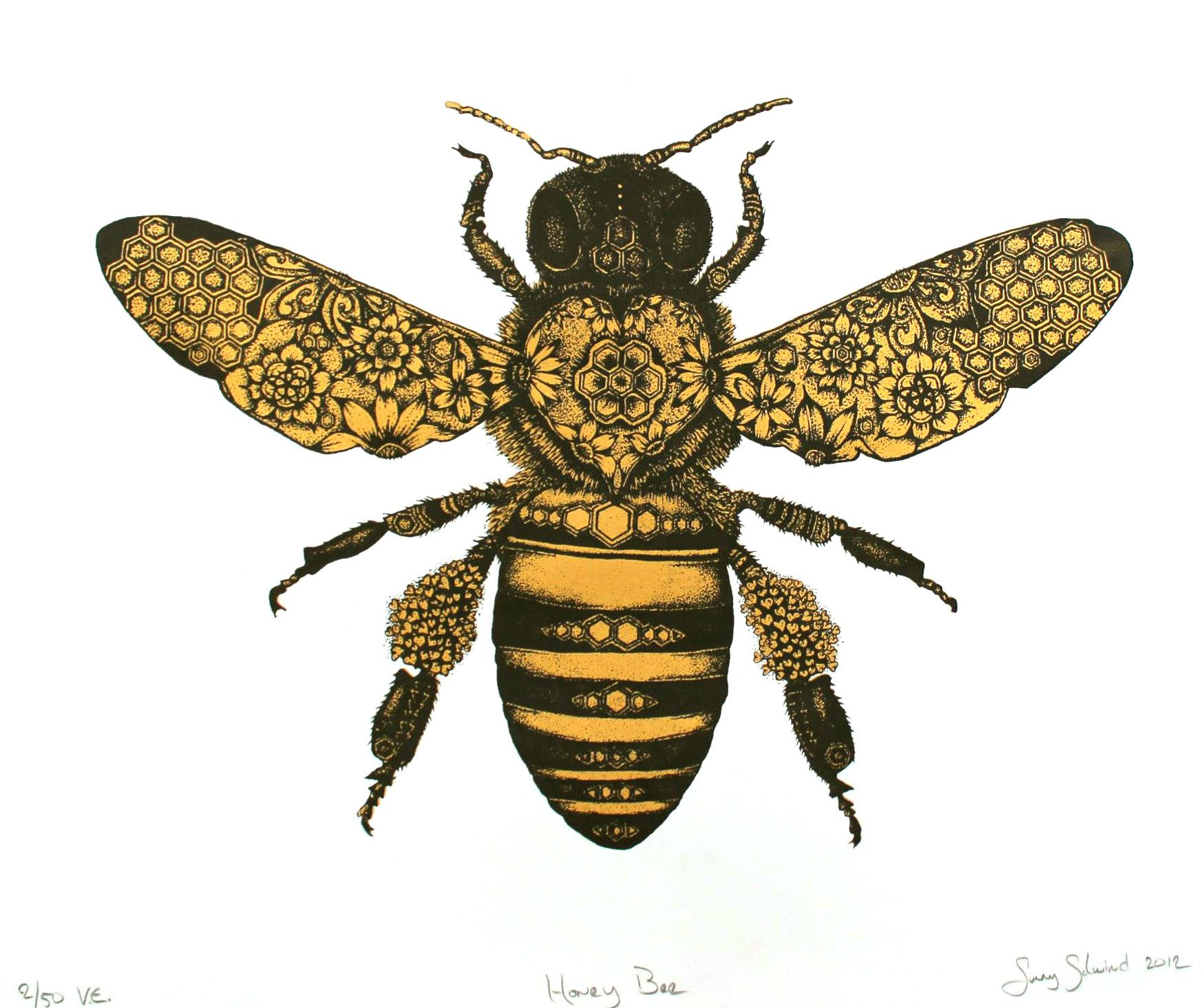 1749x1465 Honey Bee Drawing