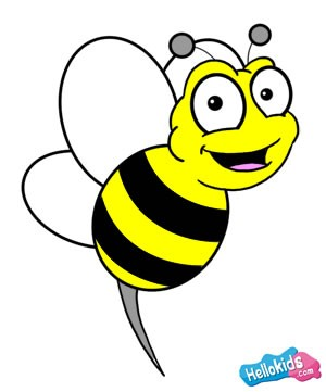 300x361 How To Draw How To Draw A Bee
