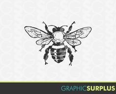 honey bee drawing clip art at getdrawings com free for personal rh getdrawings com Honey Bee Clip Art Queen Bee Clip Art