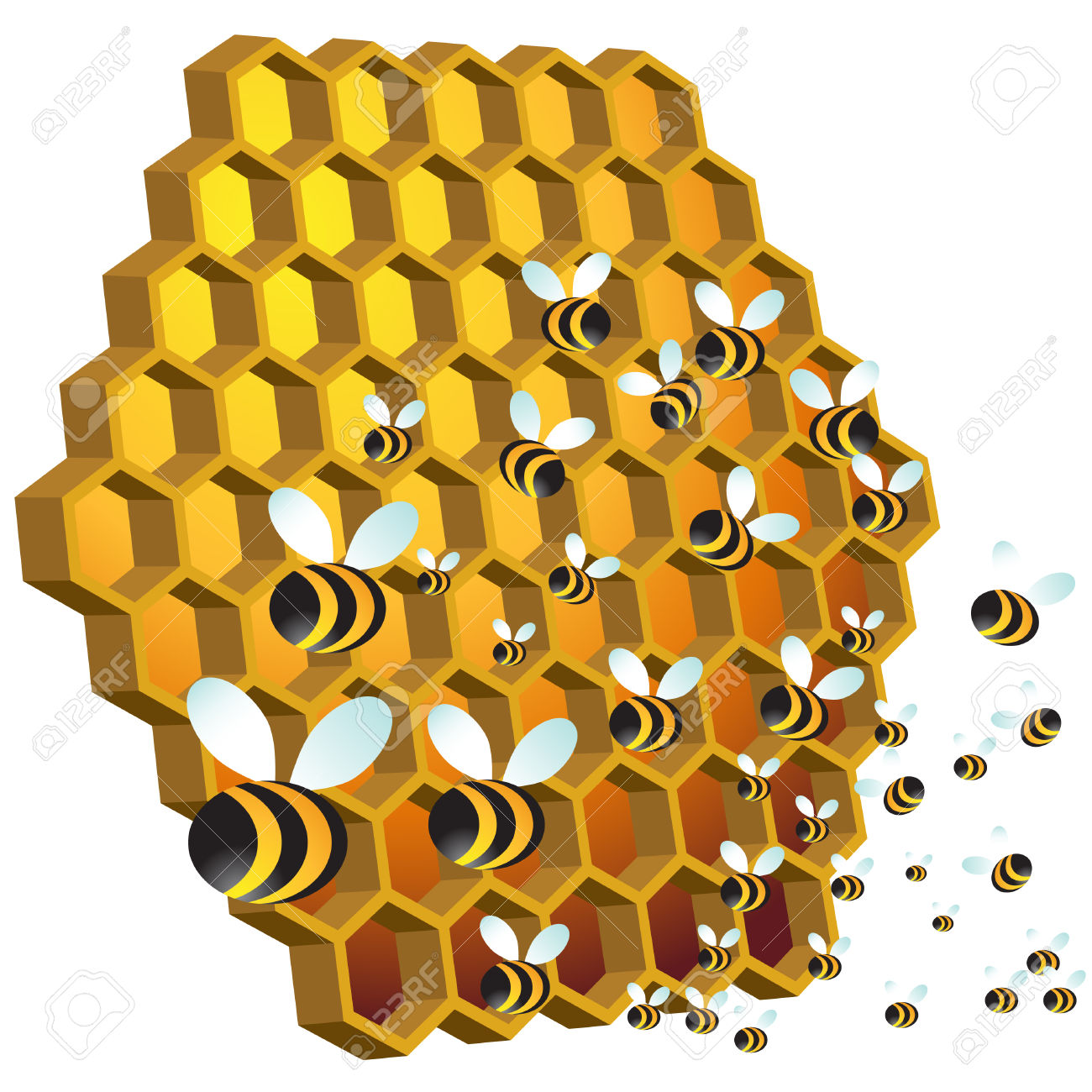 1300x1300 Honey Bee Clipart Honey Bees Bee Honey Hive Pea's Bees