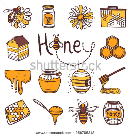 450x470 Honey Hand Drawn Decorative Icons Set With Beehive Wax Cell Flying