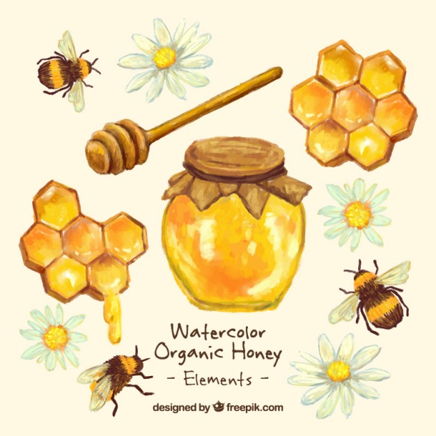 626x626 Hand Painted Honey Jar With Honeycomb Vector Free Download