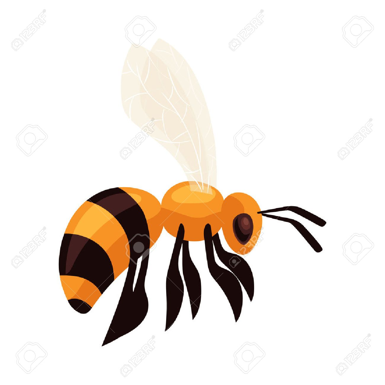 1300x1300 Flying Honey Bee, Cartoon Style Vector Illustration Isolated