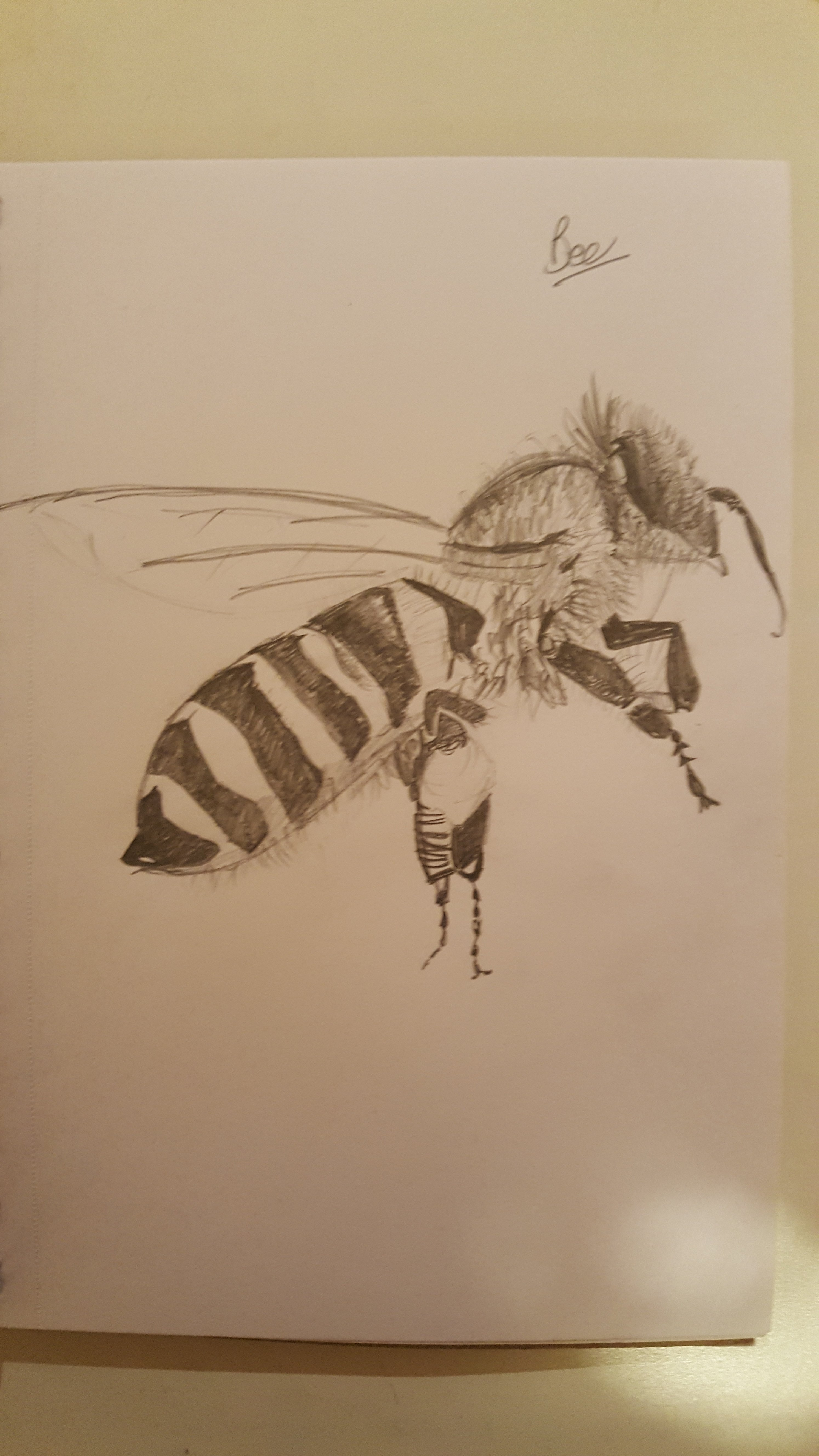 2988x5312 Honey Bee Gpen's Art Corner Tictail
