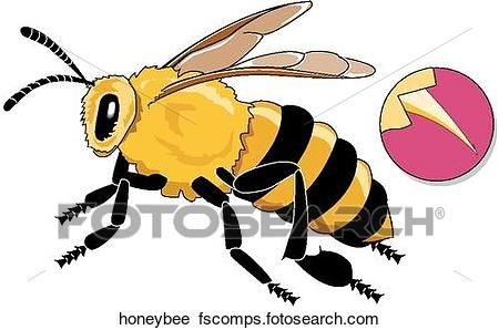 450x298 Simple Honey Bee Drawing Clip Art Clipart Of Honey Bee Honeybee