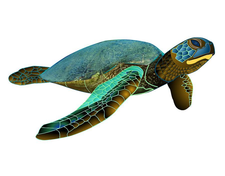 900x706 Honu Green Sea Turtle Drawing By Fred Croydon